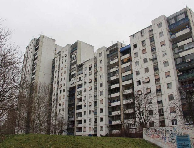 塞爾維亞移民 貝爾格萊德最好的社區