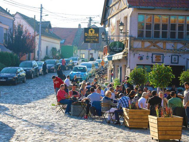 移民塞爾維亞 外籍人士社區與網路社群